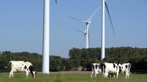anotre planete parc éolien