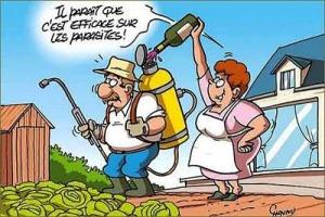 pesticides_vins