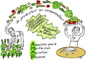 dessin-amap