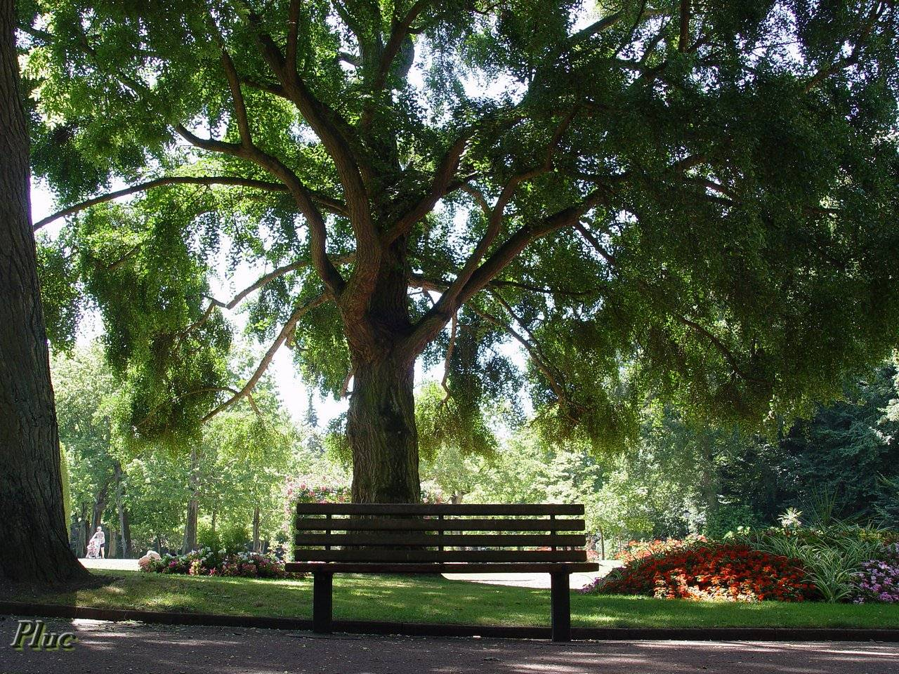 Saint omer jardin public for Jardins et espaces verts