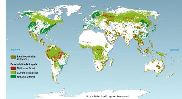 Sdm-gene-02-deforestation