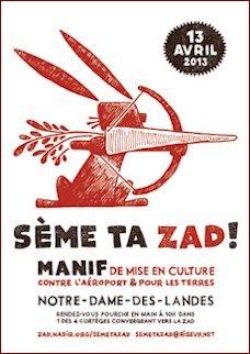 seme-ta-zad-02