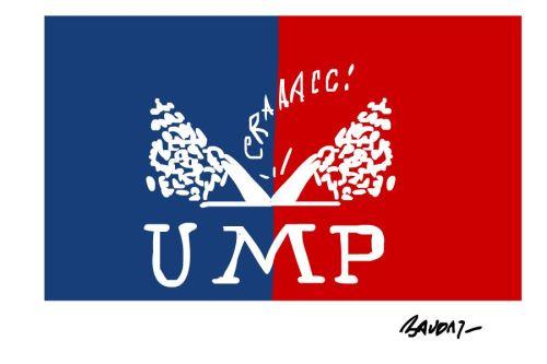 20121118_dessin_baudry_election_ump_0_0