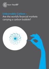 carbonbubble_report_sm