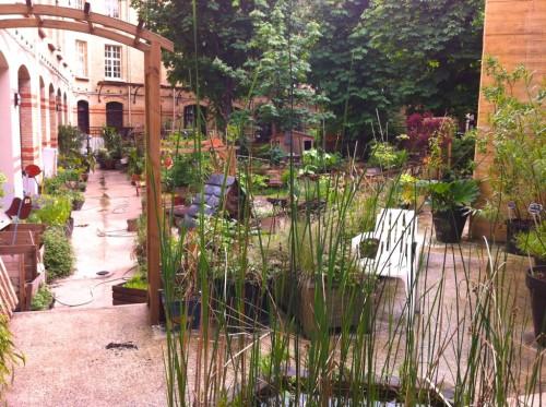 alemonde IMG_8462-1024x764.jpg jardin cree