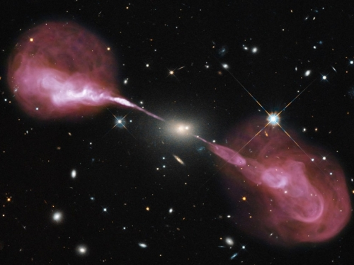 ano5866636.jpg hercule
