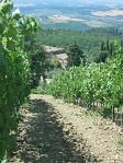 aléo ferré en Toscane