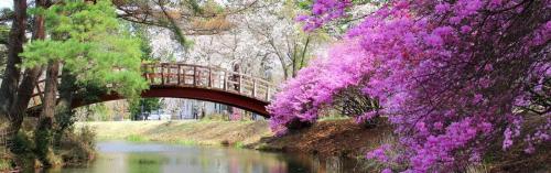 aguide japonquoi-parcs-jardins-ouverture-1