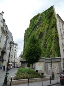 Mur végétal créé par Patrick Blanc, rue d'Aboukir, Paris 2e
