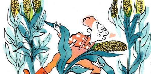 ano-prof-agriculteurs-fonctionnaires-ces-8-metiers-qui-rendent-heureux