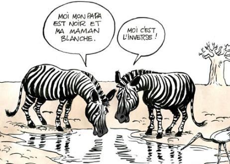 a-racisme.jpg zebre