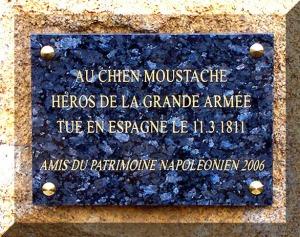 acimetièrepc_au_chien_moustache_asnieres