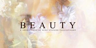 ale monde videoh_11_ill_4351629_beauty_title_card_iihih