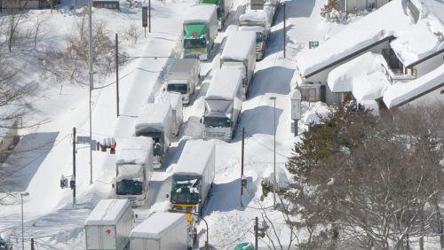 ajaponTemp_te_de_neige_au_Japon