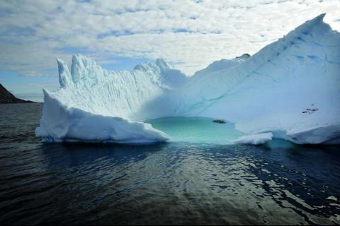 aarte polar sear