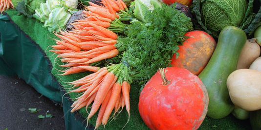 alemonde légumes bio_3_e9cb_des-legumes-provenant-de-l-agriculture_9e2cb5e305f5633e0104007faecc44c2