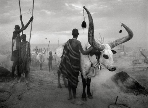 asalgado-genesis-afrique-soudan