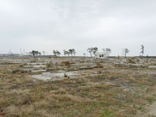 aséisme2-ans-apres-fukushima-1_2402262