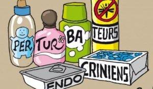 paris-perturbateur-endocrinien-santecool