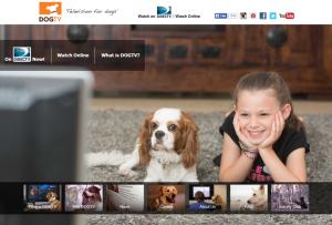 adog-TV-300x203
