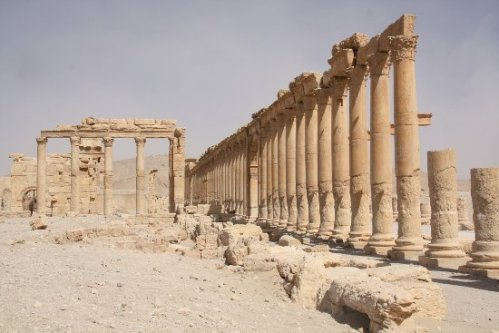 apalmyre2-colonnade