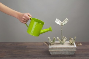 crowdfunding(1)