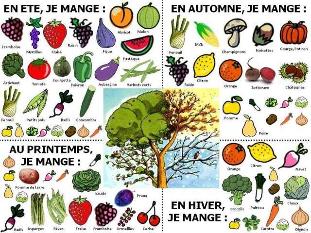 apercu-fruits-legumes-printemps-ete-automne-hiver-saison