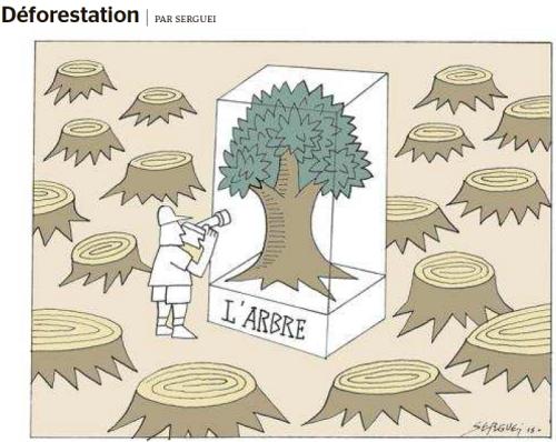 adéforestationserguei!cid_image007_png@01D0ECC2