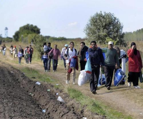 ©ZOLTAN GERGELY KELEMEN/EPA/MAXPPP - epa04918363 Migrants that arrived from Serbia walk near the border village of Roszke, 180 kms southeast of Budapest, Hungary, 07 September 2015. Hungarian police registered 999 migrants coming across the Serbian border on Monday, after registering 2,203 on Sunday. A new Hungarian reception camp at Roszke, on the border with Serbia, was quickly filled to capacity. EPA/ZOLTAN GERGELY KELEMEN HUNGARY OUT