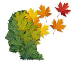 maladie Alzheimer1336284-55f2ef8ds