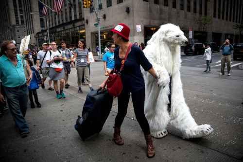 aclimatnew-york-ny-september-258c-diaporama
