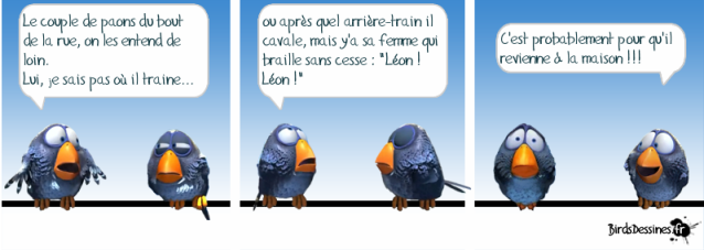 voinage paons