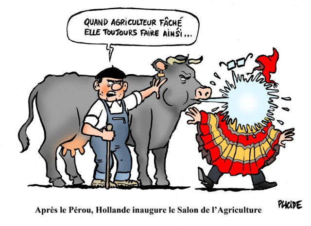 aleplacide16-02-26-hollande-vache