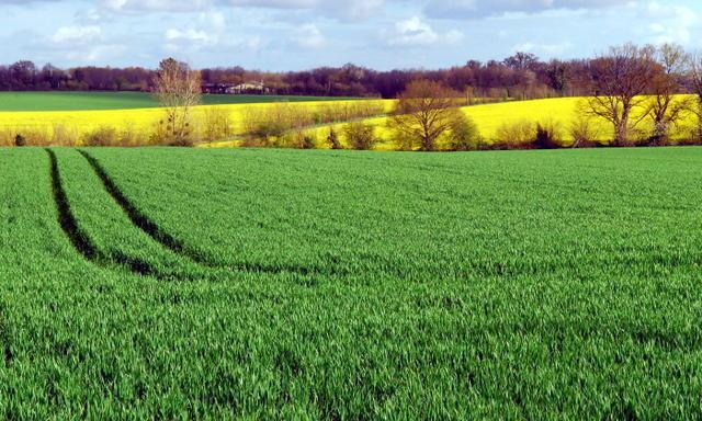 Un propriétaire qui loue ses terres à un exploitant agricole doit s'engager sur une longue durée.