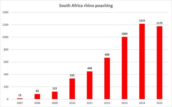 Rhino-poaching-numbers-South-Africa-580