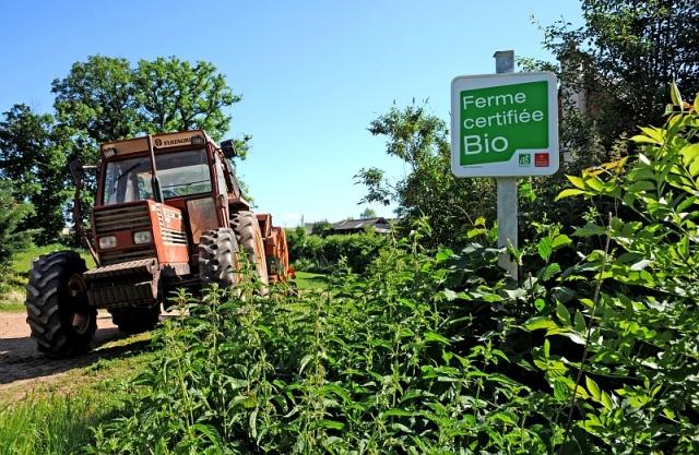 Panneau de certification d'agriculture biologique