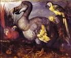 dodo02
