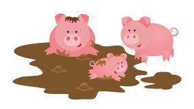 famille-de-porcs-33348434