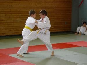 judo ori