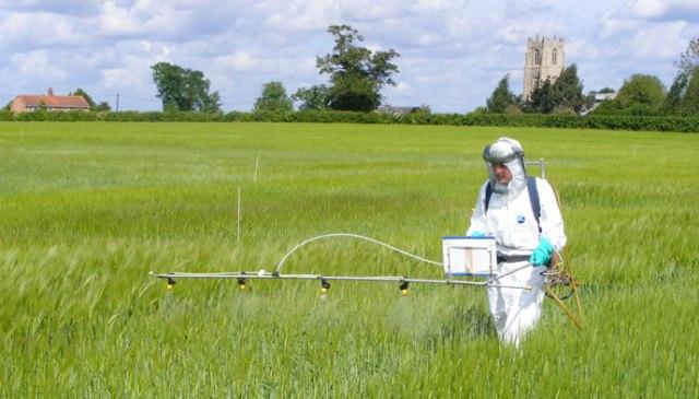 pesticides-champs
