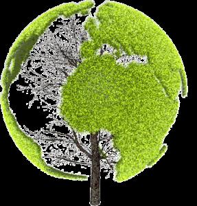 logo-plantes