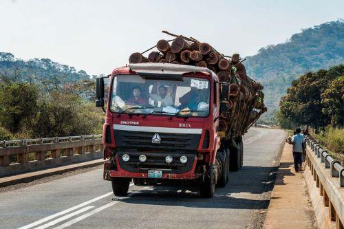 4638951_6_c149_le-transport-du-bois-se-fait-par-camion-au_1efc525727ced97b34cc5bdb668db5f2