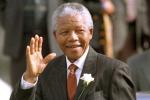Mandela-Nelson