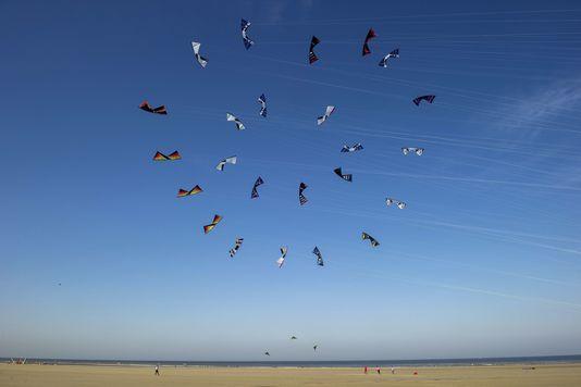 4984238_7_5876_cerfs-volants-sur-la-plage-de-berck-pas-de_2bbd962857564d659832231a9f3f72ff