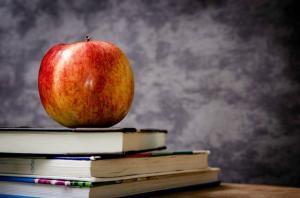 Le-calendrier-des-vacances-scolaires-2016-2017_image_article_large