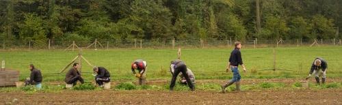 14-10-29-ferme-de-moyembrie-image-a-la-une-1200_370-srgb-opti-web-alex-bonnemaison-4-sur-6