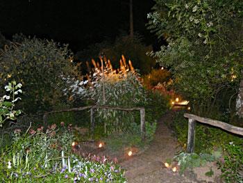 jardin-nuit2