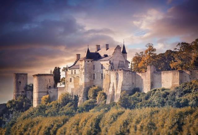 La forteresse royale prise depuis le domaine de Noiré.