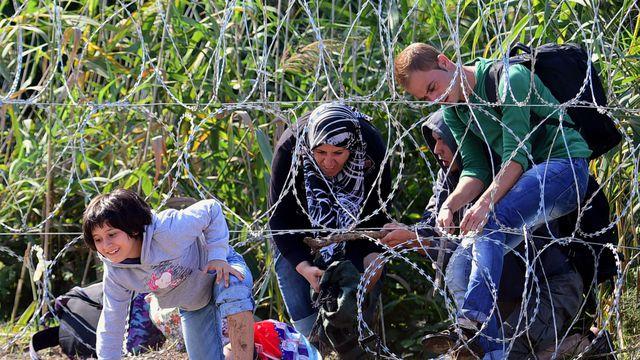 un-enfant-de-migrants-traverse-une-cloture-barbelee-a-roszke-a-la-frontiere-hongro-serbe-le-28-aout-2015_5405341