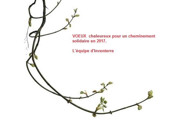 voeux-2017-jpg-ori